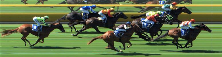 SEYMOUR Race 4 No. 5 Sunbelt @ $5 (1.25 UNITS WIN)   Result:  Unplaced at SP $5.50. Coming from the tail of the field, was never a winning threat, getting busy when it was all over. Outcome -1.25 Units.