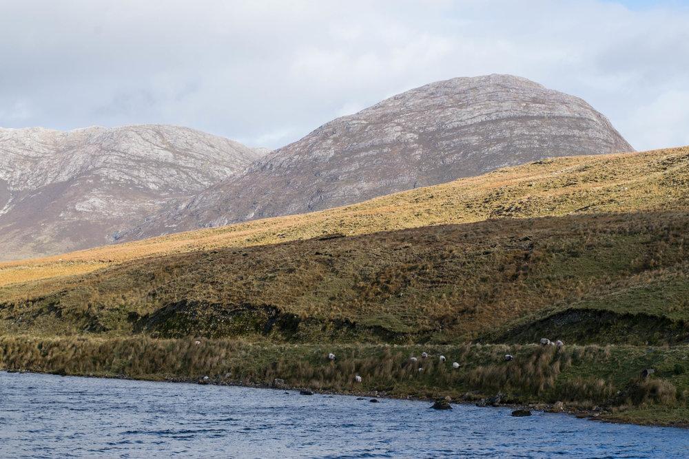 Ireland-6.jpg