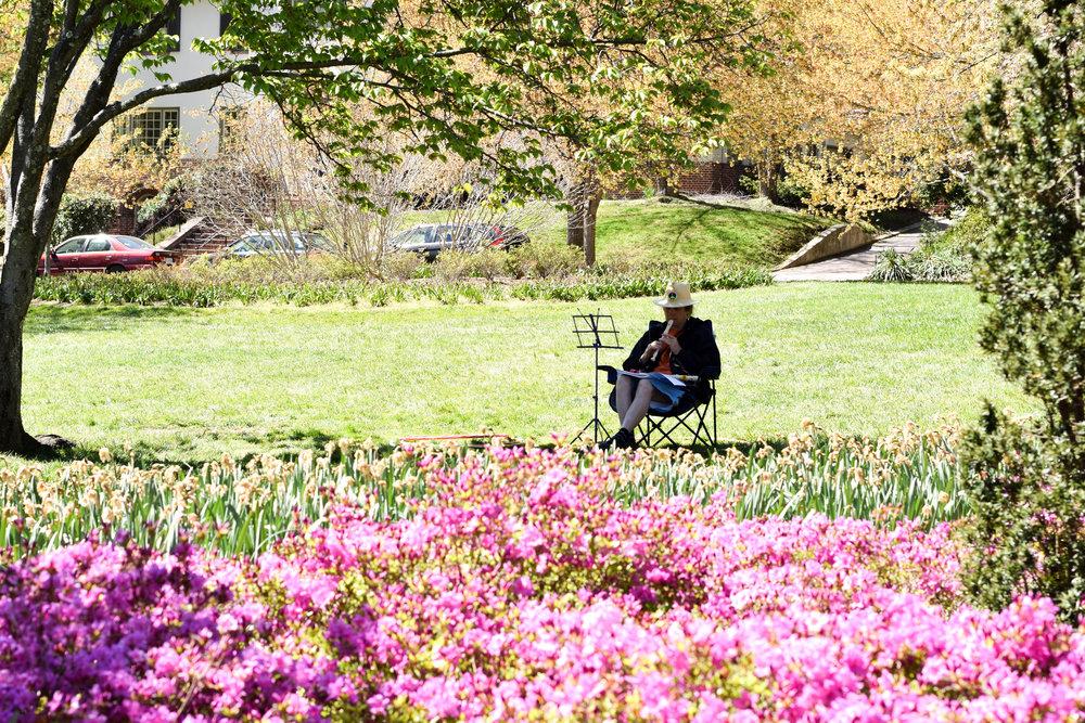 Sherwood-Gardens-15.jpg