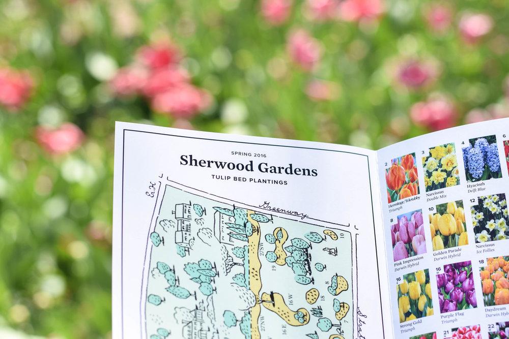Sherwood-Gardens-18.jpg