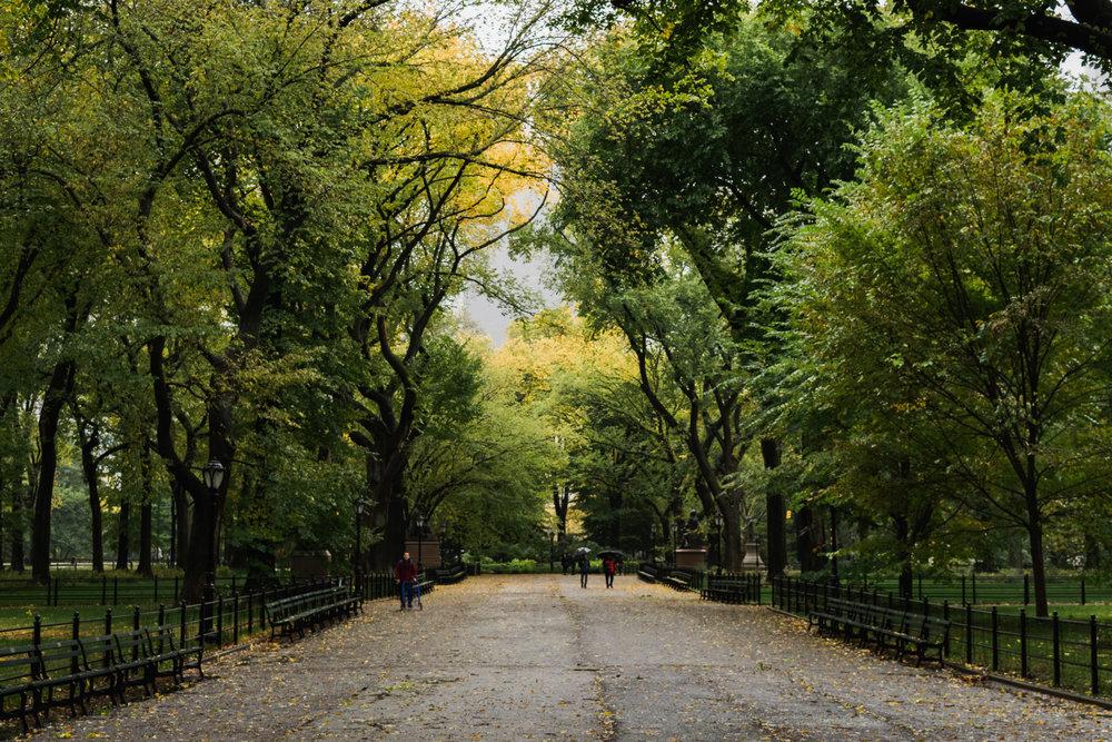 NYC October-13.jpg
