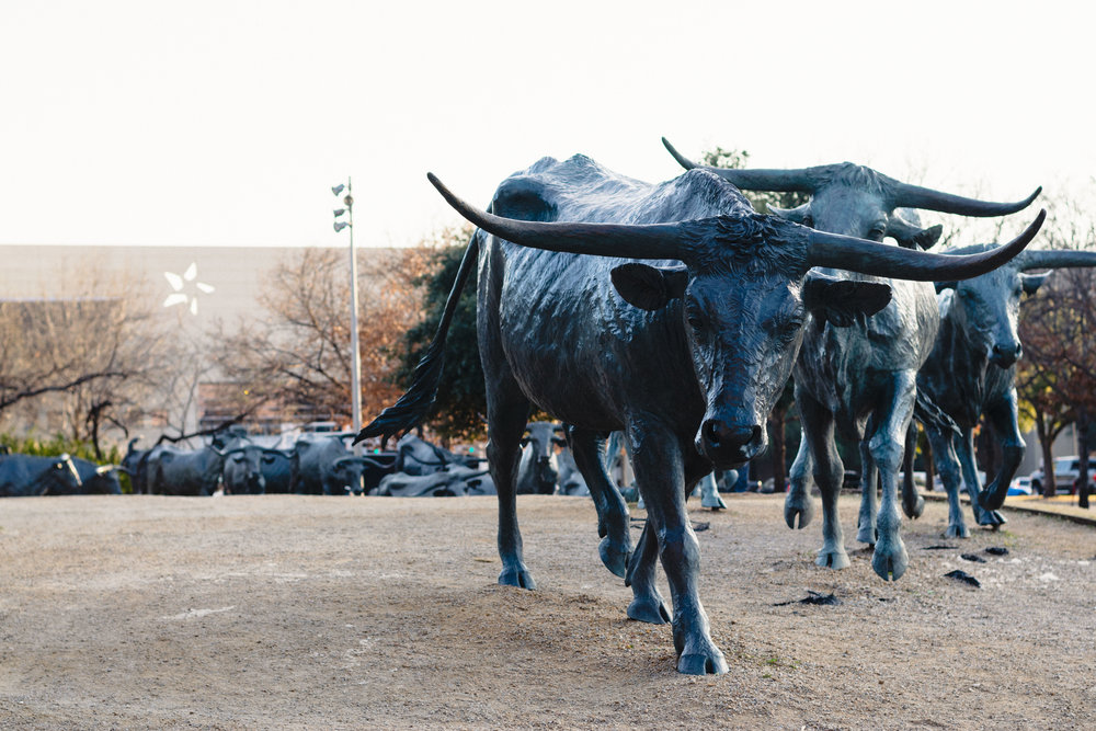 Dallas-2.jpg