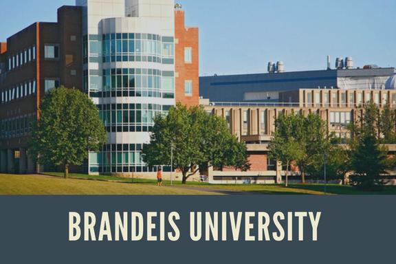 Brandeis University.png