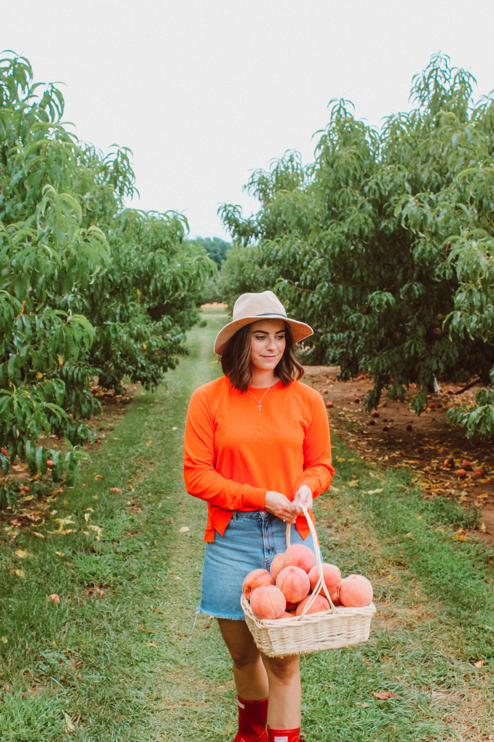 Peach Picking - With Love and Liv