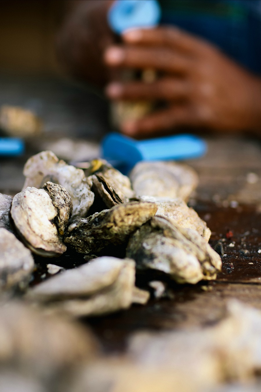 How to Shuck Oysters for Party