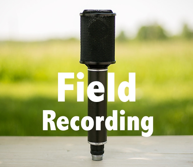 fieldrec.jpg