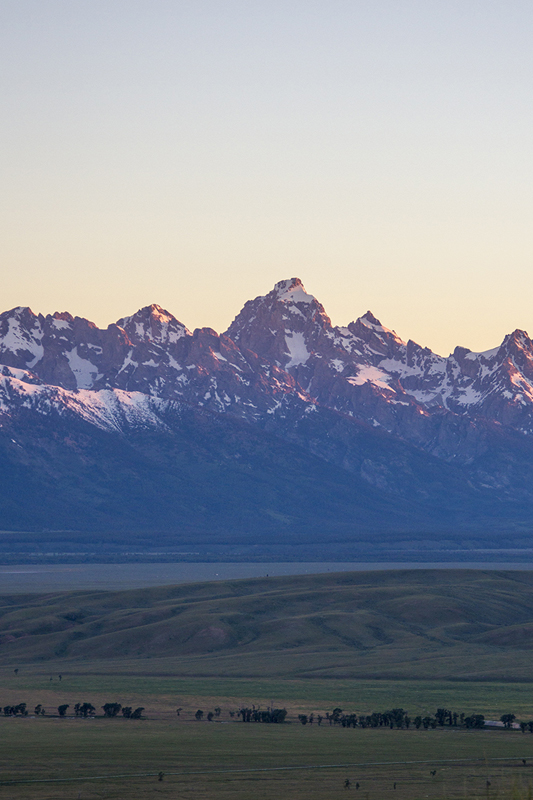 The Grand Tetons during sunrise as the sun is hitting the mountains.