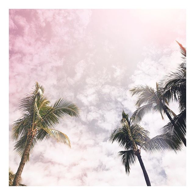 Back in Hawaii cause #yolo