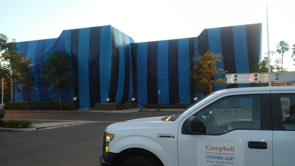 Commercial Building Fumigation
