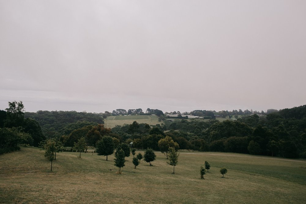 tanglewood-estate-mornington-peninsula-wedding_0006.jpg
