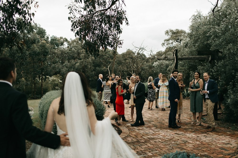 tanglewood-estate-mornington-peninsula-wedding_0104.jpg