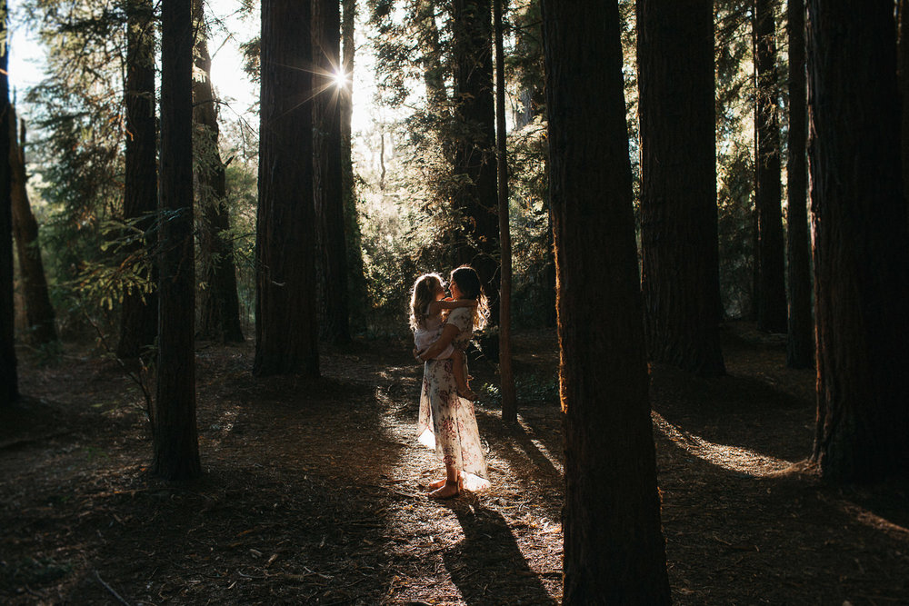 redwood-forest-lifestyle-family-photography-1.jpg