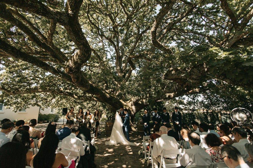 coombe-yarra-valley-wedding-photographer_0060.jpg