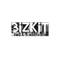 BizKitSquareMini.png