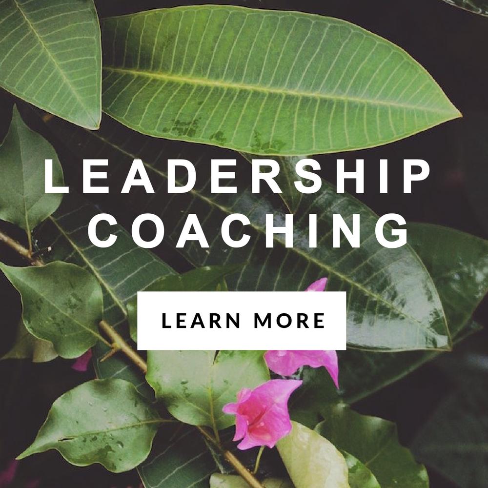 Sequel Professional development services - leadership coaching