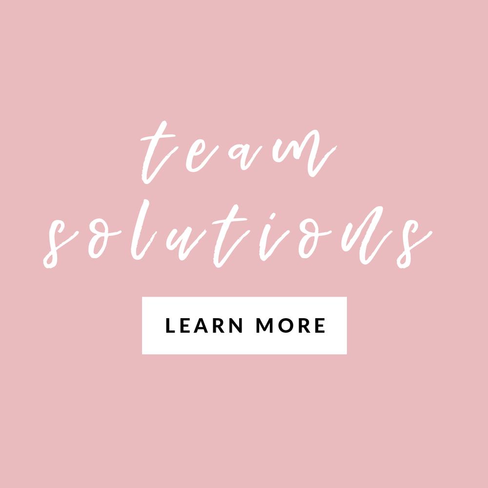 Sequel professional development services - team solutions