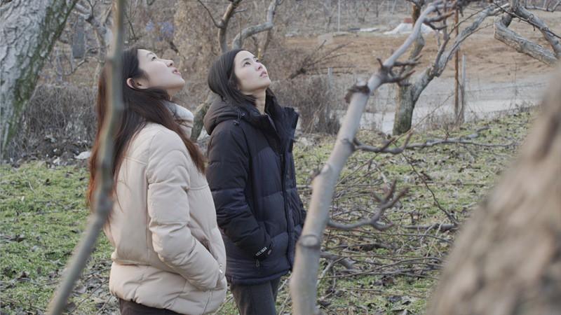 FEBRUARY + Q&A   Dir. Kim Joong-hyun