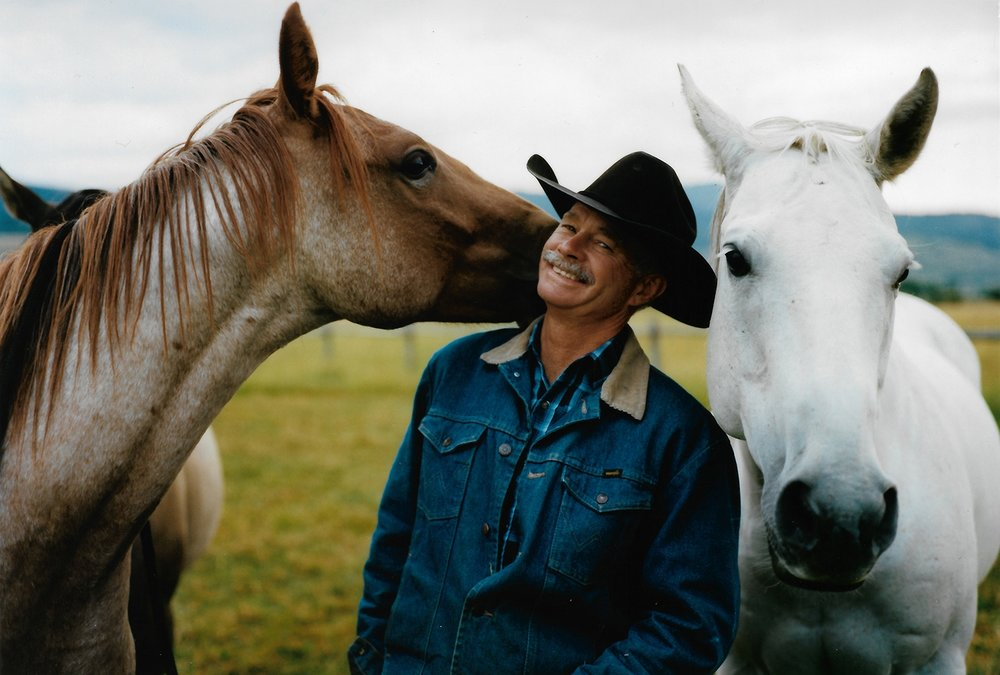 HORSE WHISPERING - Unlock vast untapped potential in companies and individuals