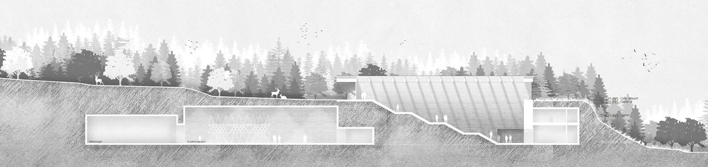 05-detmold-behet-bondzio-lin-architekten.jpg