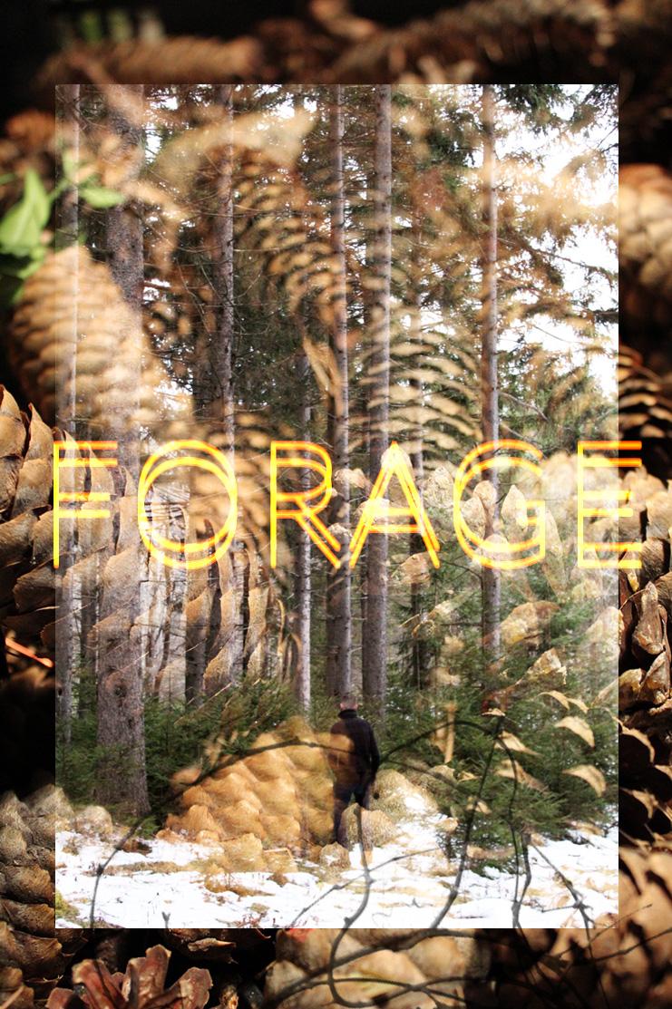 ForageBlock.jpg