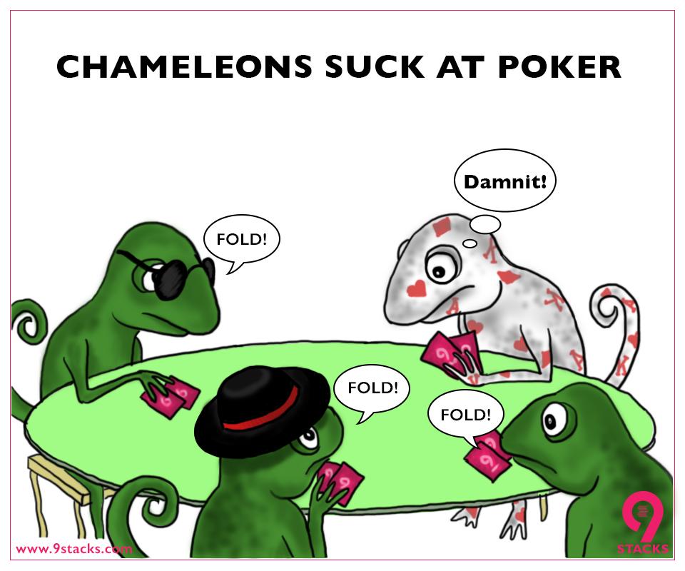 FB_Chameleons.jpg