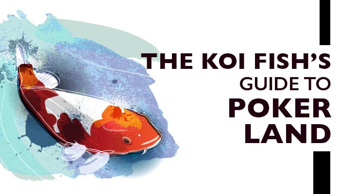 koi fish (1).jpg