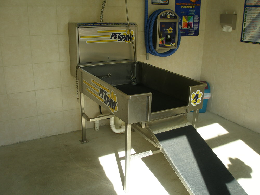 Wash works car pet wash wash works car and pet wash pet washg solutioingenieria