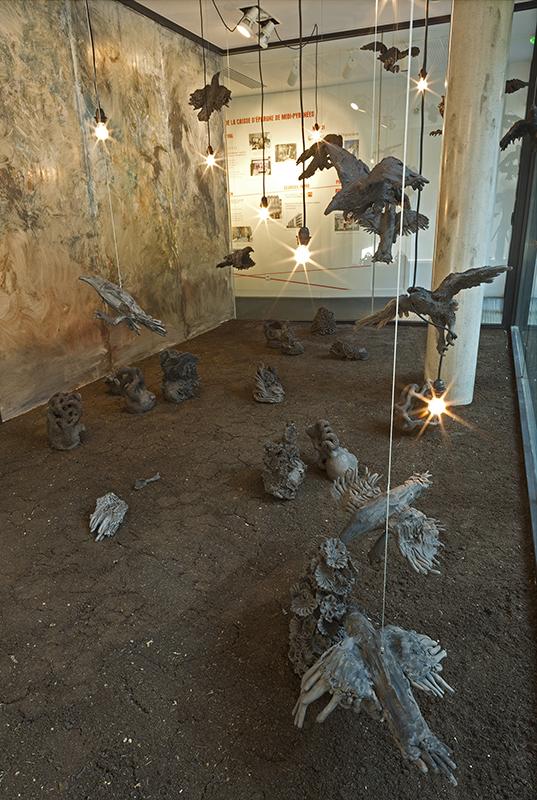 Aquarium Toulouse 4(bd).jpg