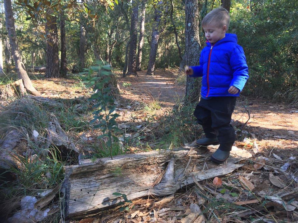 Balancing on the rocking log.