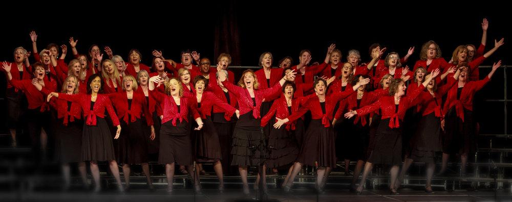 total chorus red.jpg
