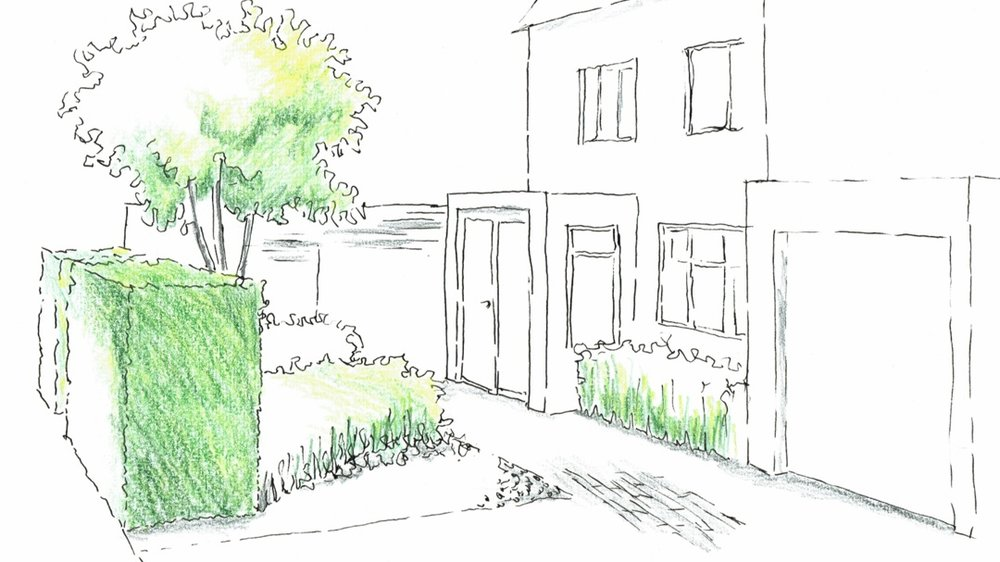 urban front and back gardens -