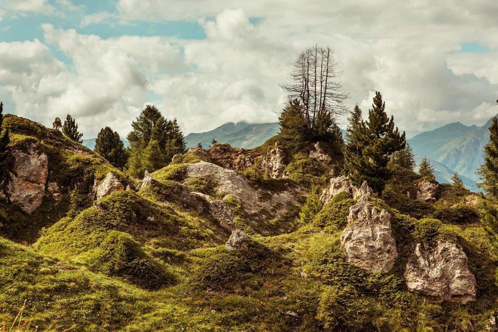 Paysage de montagne #1