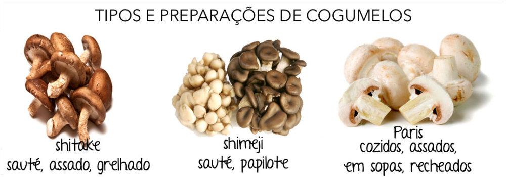 cogumesos.jpg