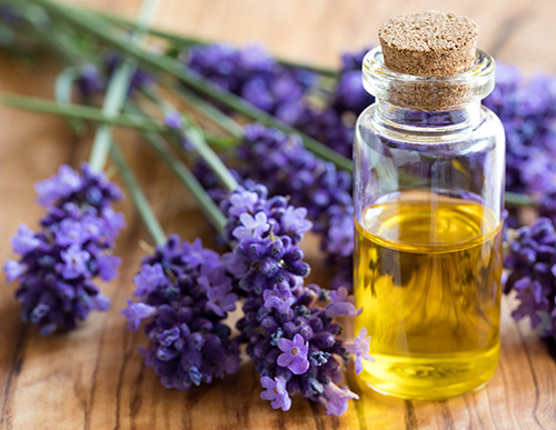 Essential Oils at LivingWell
