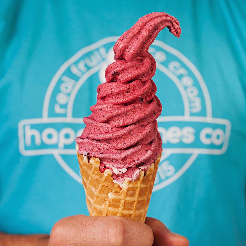 Happy Cones Co - Real Fruit Ice Cream