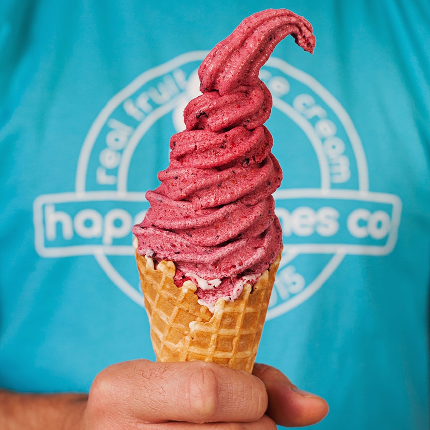 Happy Cones Co - Real Fruit Ice Cream