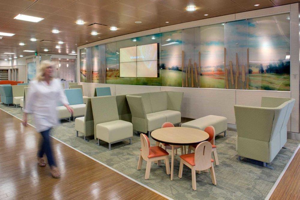 David Fortney Healthcare Video Waiting Room Artwork