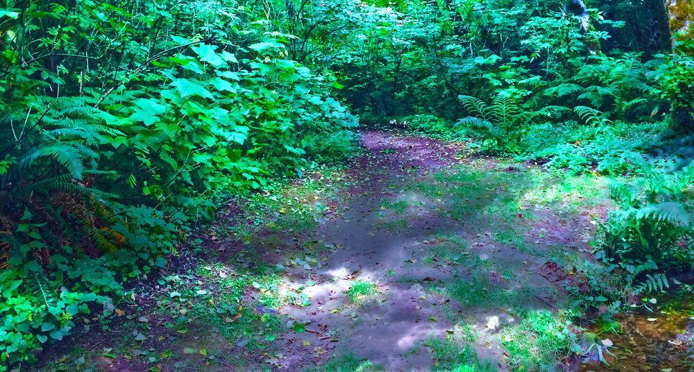 powell-landscape-4.jpg