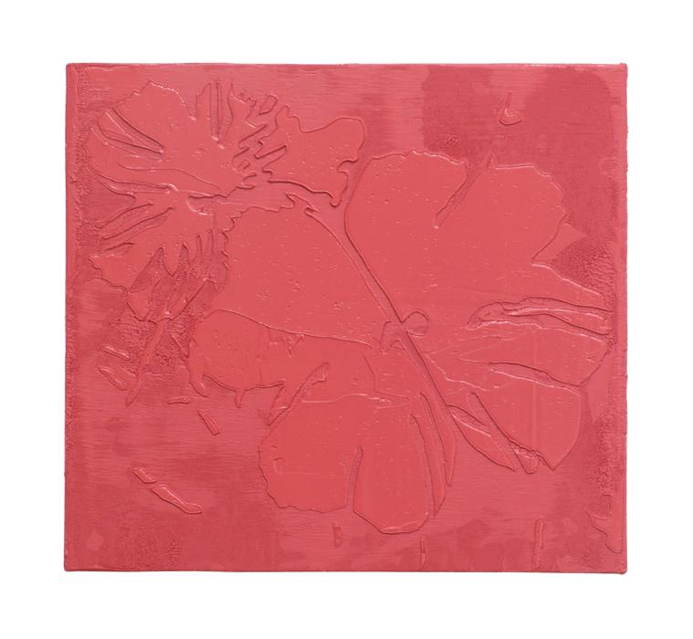 Rose-Colored Primrose