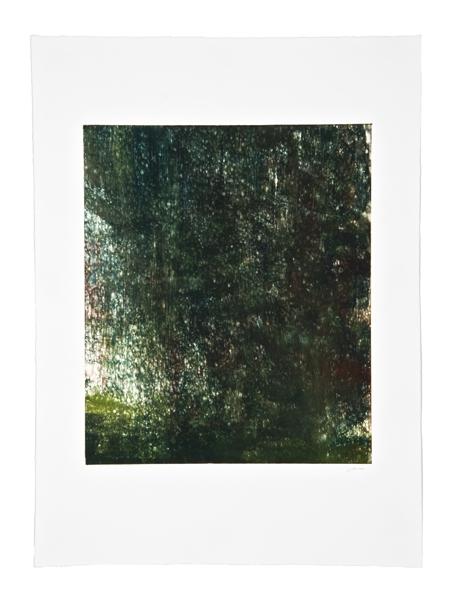 The Green World: Fujita's Wager 46