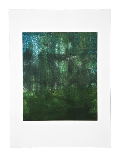 The Green World: Fujita's Wager 51