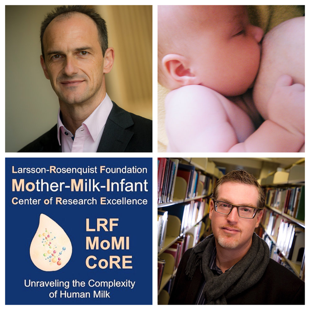 Top left: Lars Bode, associate professor of pediatrics at the UC San Diego School of Medicine and director of the newly launched  Larsson-Rosenquist Foundation Mother-Milk-Infant Center of Research Excellence . Bottom right: Alan Daly, chair and professor of the Department of Education studies at UCSD and a member of MoMI CoRE's scientific advisory board. Top right: Flickr CC image via  Summer