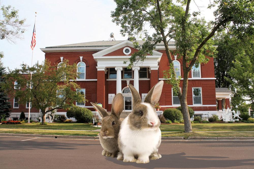 Bunny Bingo.jpg