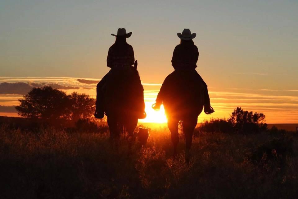horses-sunset.jpg