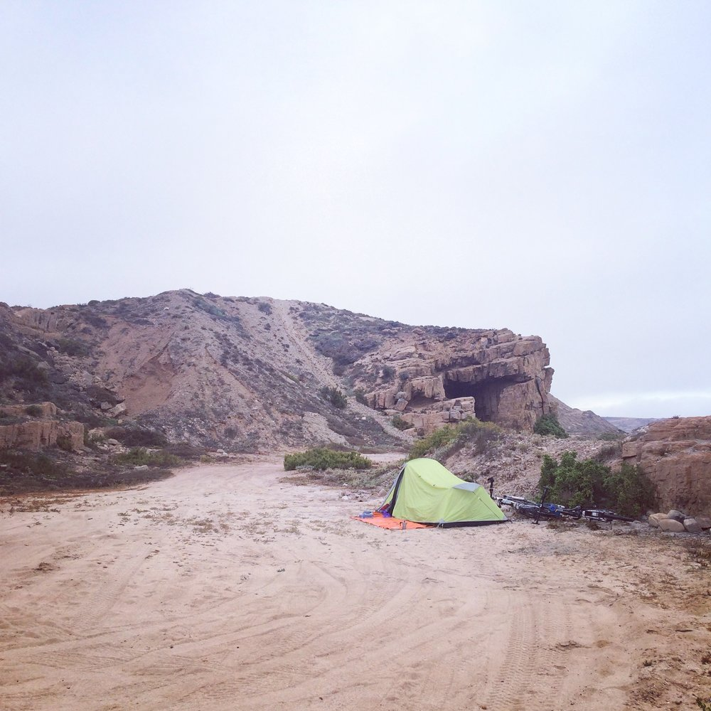 Camping wild!