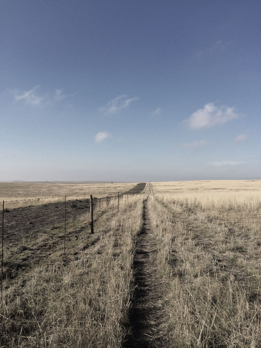 Wide horizon