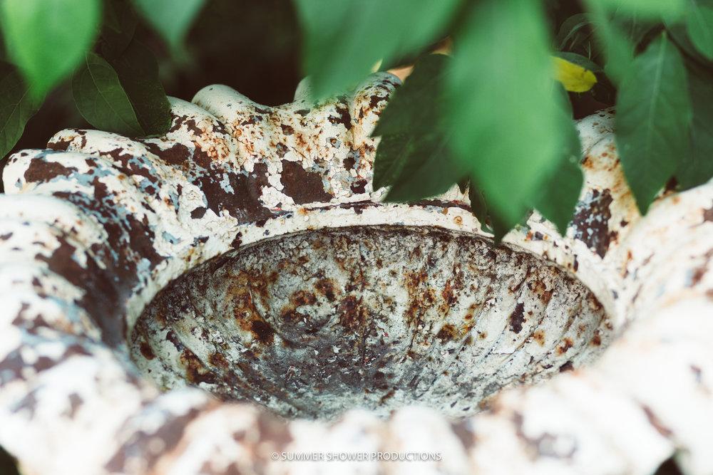 Cracked white Bowl ssp.jpg
