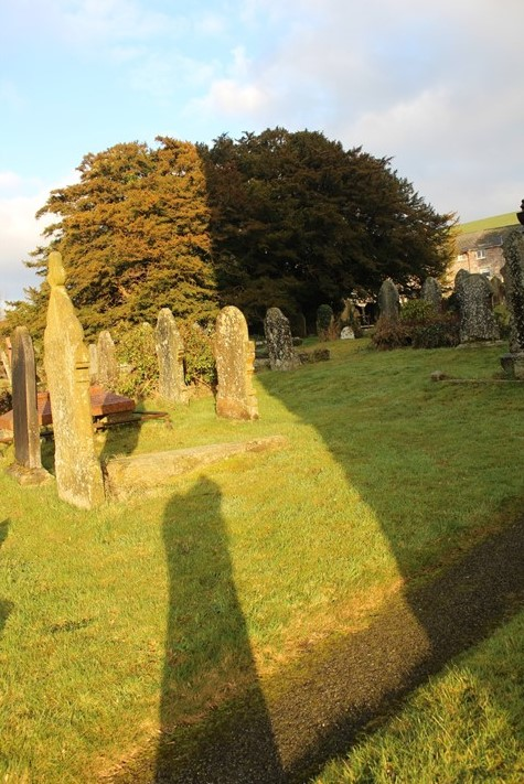 Yvette Marks Light and Shadows at Llangernyw Yew