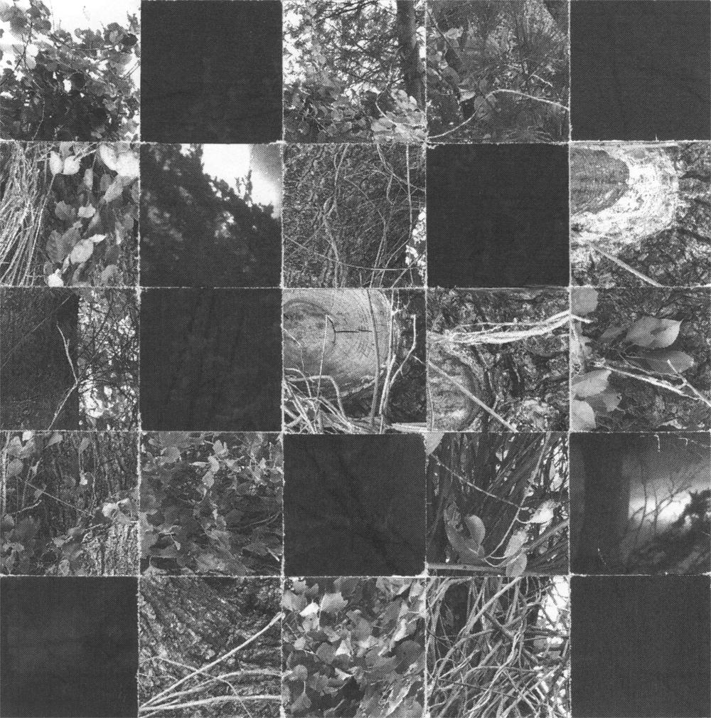 5x5_Square_Leaves_Wood_Crop&Trim.png