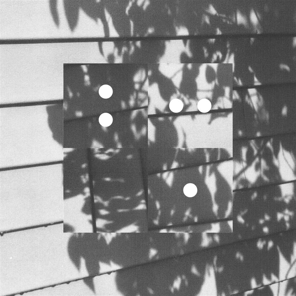 LeaveShadows_Working_Crop&Trim.png
